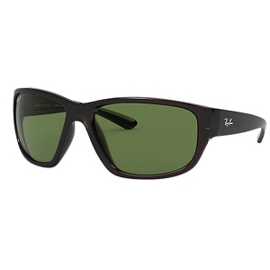 Ray Ban RB4300 Transparent Grey / Polarized Classic Green