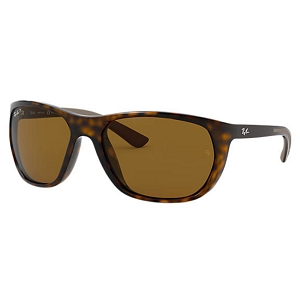 Ray Ban RB4307 Tortoise / Polarized Classic Brown